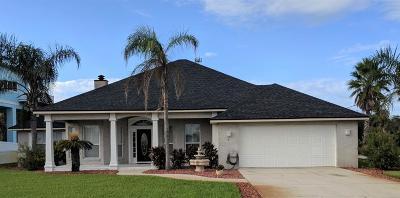 Palm Coast Single Family Home For Sale: 7 Deerwood Street