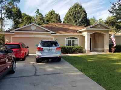 Palm Coast Single Family Home For Sale: 19 Powder Hill Lane