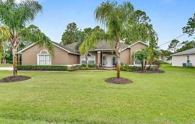 Palm Coast Single Family Home For Sale: 18 Princess Kathleen Ln