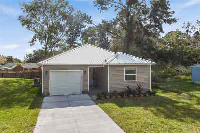 St Augustine Single Family Home For Sale: 319 Ravenswood Drive