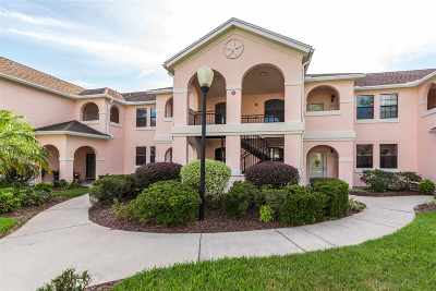 St Augustine Condo For Sale: 1625 Vista Cove Road