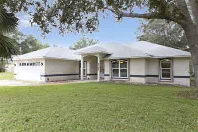 St Augustine Single Family Home For Sale: 4705 Sherlock Pl