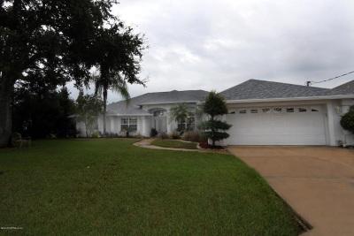 Palm Coast Single Family Home For Sale: 18 Fletcher Ct