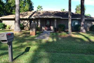 Palm Coast Single Family Home For Sale: 29 Brookside Lane
