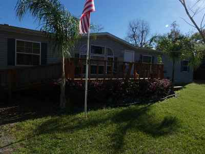 St Augustine Single Family Home For Sale: 451 Easy St