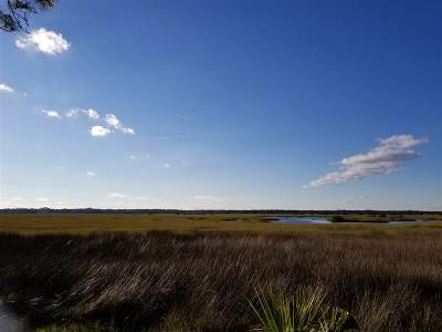 Marsh Creek Residential Lots & Land For Sale: 370 Oyster Court