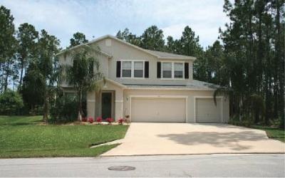 Palm Coast Single Family Home For Sale: 29 Robinson Drive