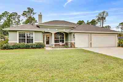 Palm Coast Single Family Home For Sale: 41 Riverview Dr