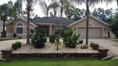 Palm Coast Single Family Home For Sale: 15 Woodguild Place