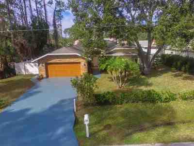 Palm Coast Single Family Home For Sale: 53 Briarvue Ln