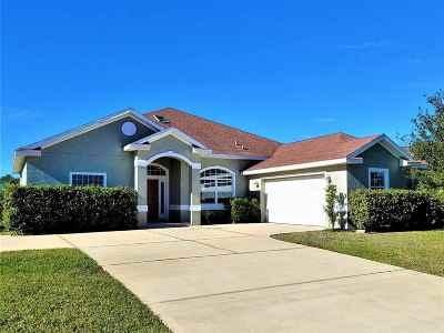 Palm Coast Single Family Home For Sale: 28 Columbus Ct