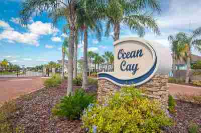 Single Family Home For Sale: 393 Ocean Cay Blvd.
