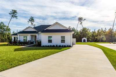 St Augustine Single Family Home For Sale: S 217 Shadowwood Drive
