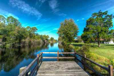 Palm Coast Single Family Home For Sale: 20 Birchwood Place