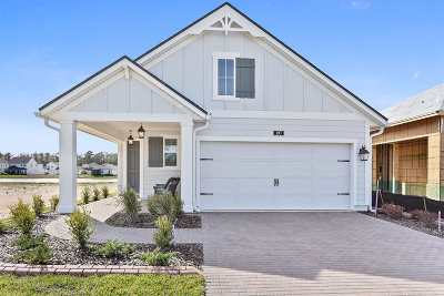Ponte Vedra Single Family Home For Sale: 197 Vista Lake Circle
