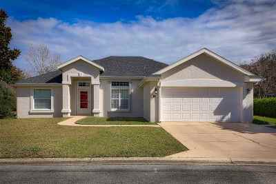 St Augustine Single Family Home For Sale: 186 Anastasia Lakes Drive