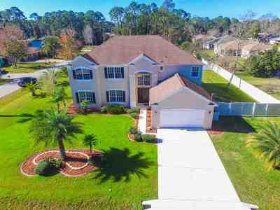 Palm Coast Single Family Home For Sale: 161 Beachway Dr