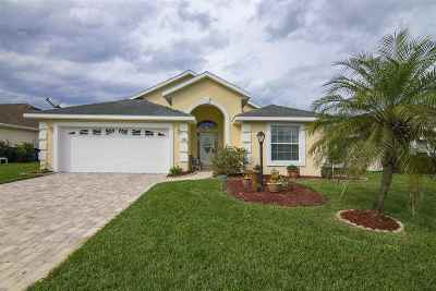 St Augustine Beach Single Family Home For Sale: 781 Captains
