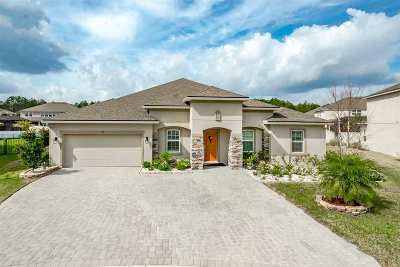 St Augustine Single Family Home For Sale: 104 Hacienda