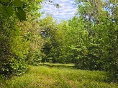 Residential Lots & Land For Sale: 5220 County Road 13 South