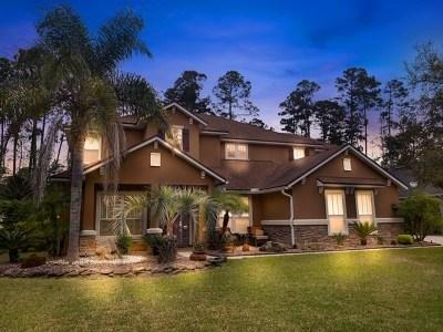 Saint Johns County Single Family Home For Sale: 126 Worthington
