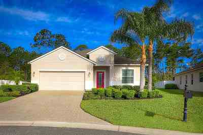 St Augustine Single Family Home For Sale: 22 Sol Court