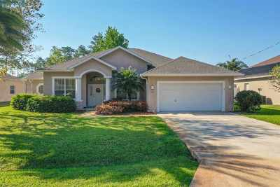 Palm Coast Single Family Home For Sale: 41 Ethan Allen Dr.