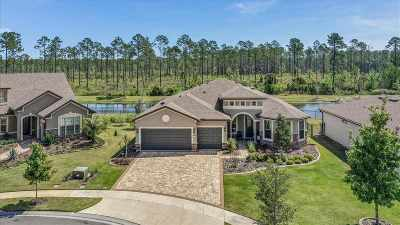 Ponte Vedra Single Family Home For Sale: 448 Eagle Pass Dr