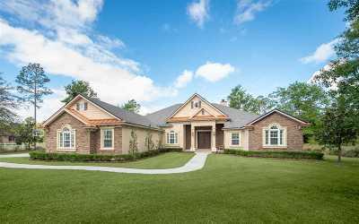 St Augustine Single Family Home For Sale: 156 Ashton Oaks Dr