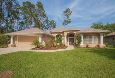 Palm Coast Single Family Home For Sale: 67 Egret Trail