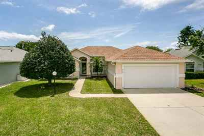 St Augustine Beach Single Family Home For Sale: 748 Captains Drive