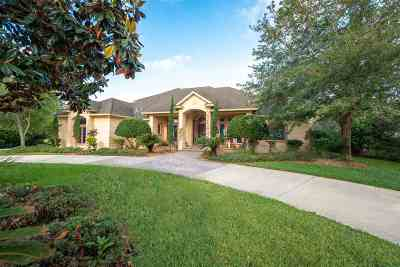 Marsh Creek, Sea Colony-St Single Family Home For Sale: 176 Herons Nest Ln