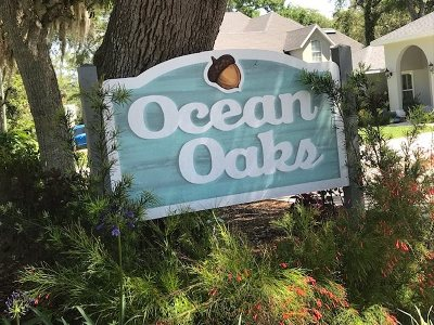 St Augustine Beach Residential Lots & Land For Sale: 419 Ocean Drive