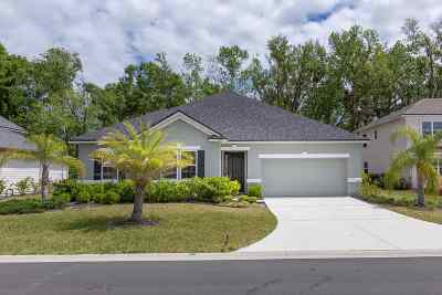 St Augustine Single Family Home For Sale: 139 Montiano Circle