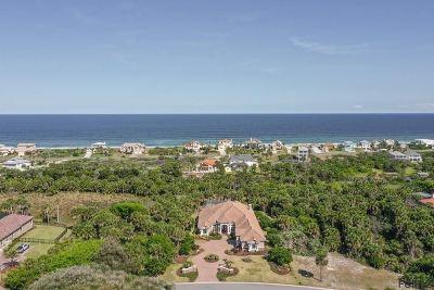 Palm Coast Single Family Home For Sale: 143 Island Estates Parkway