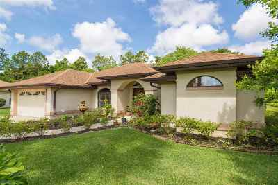 St Augustine Single Family Home For Sale: 505 Rio Court