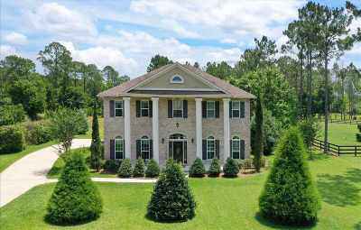 St Augustine Single Family Home For Sale: 300 Vicki Towers Dr