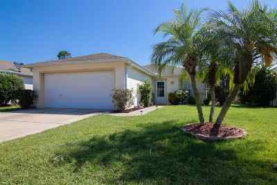 St Augustine Single Family Home For Sale: W 313 Jayce Way