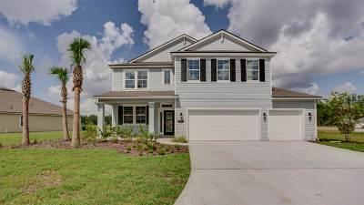 Saint Johns County Single Family Home For Sale: 253 Prince Albert Ave
