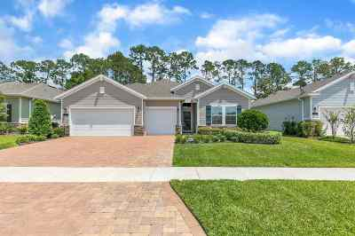 St Augustine Single Family Home For Sale: 65 Athens Dr