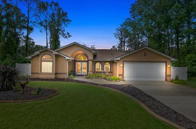 Palm Coast Single Family Home For Sale: 6 Wills Place