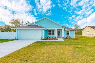 Saint Johns County Single Family Home For Sale: N 223 Prairie Lakes Drive
