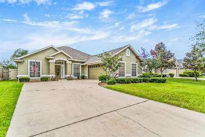 St Augustine Single Family Home For Sale: 408 Lake Monroe Place