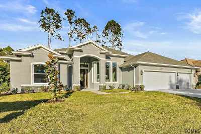 Palm Coast Single Family Home For Sale: 84 Lancelot Dr