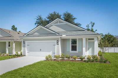St Augustine Single Family Home For Sale: 338 Caretta Circle