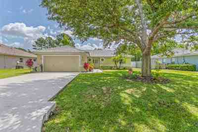 Palm Coast Single Family Home For Sale: 169 Pritchard Dr