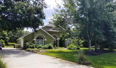 St Augustine Single Family Home For Sale: 912 White Eagle Cir
