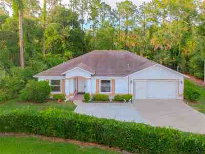 Palm Coast Single Family Home For Sale: 9 Waywell