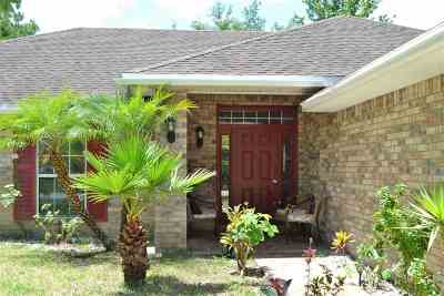 Palm Coast Single Family Home For Sale: 29 Red Birch Lane