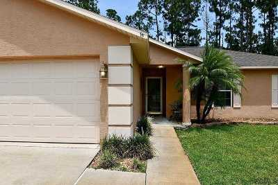 Palm Coast Single Family Home For Sale: 69 Pickering Drive